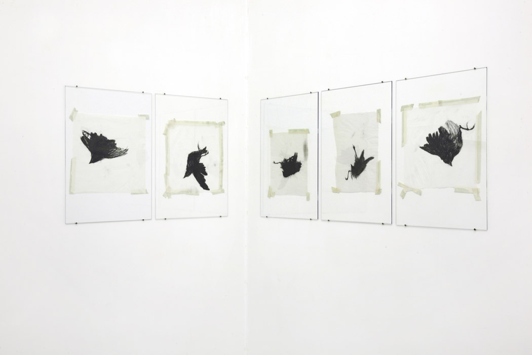 Alberto Tadiello, Adunchi (Hooked), mixed technique on paper (drawings), metal extrusions, plexiglas sheets, translucent sketching paper (prints), 38 x 51 each, twenty-two drawings and forty-four prints, 2010