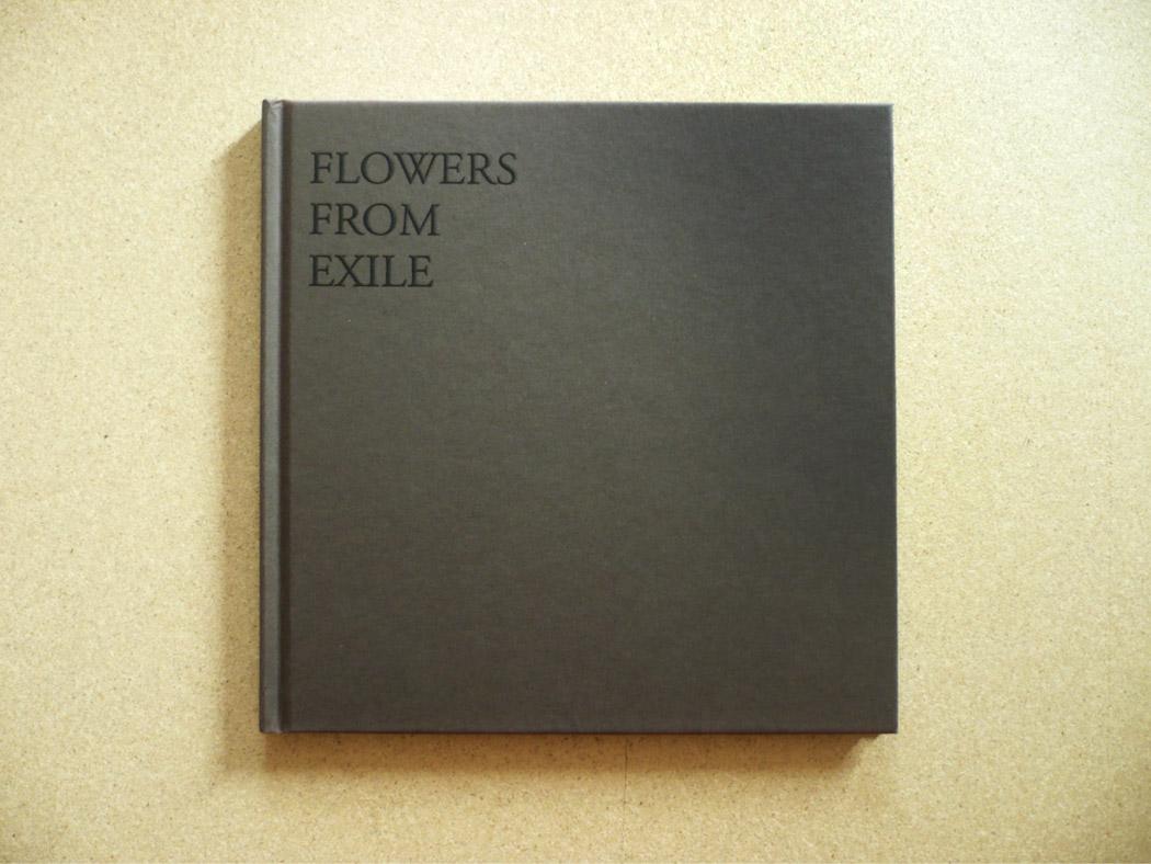Alberto Tadiello, Floerr from exile, 64 pp. / 21 x 21 cm / Comunità Montana Centro Cadore, Belluno, Collezione di studi. Testi di Daniela Zangrando, 2010